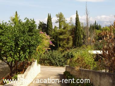 Apartments 02301SUPE  Croatia - Dalmatia - Island Brac - Supetar - apartment #1337 Picture 2