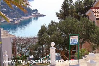 Apartments 2230  Croatia - Dalmatia - Makarska - Brela - apartment #2341 Picture 4