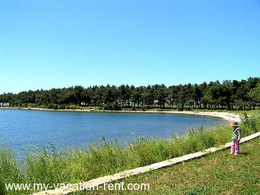 Apartments MIRA Croatia - Istria - Novigrad - Novigrad - apartment #336 Picture 4