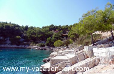 Apartments 4958 Croatia - Dalmatia - Island Brac - Cove Osibova (Milna) - apartment #4176 Picture 7
