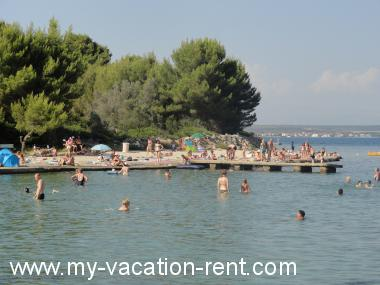 Apartments 6125 Croatia - Dalmatia - Island Pasman - Zdrelac - apartment #4498 Picture 8