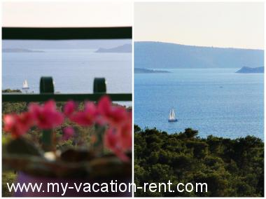 Apartments 7887  Croatia - Dalmatia - Split - Seget Donji - apartment #4749 Picture 4