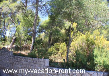 Apartments 00914LUBM  Croatia - Dalmatia - Korcula Island - Lumbarda - apartment #5332 Picture 3