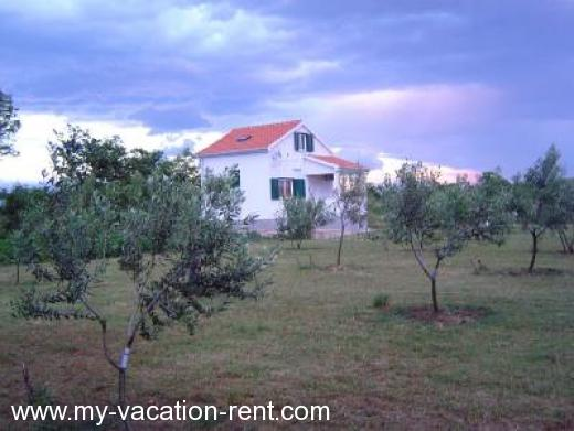 Holiday home Olive House Croatia - Dalmatia - Zadar - Privlaka - holiday home #634 Picture 5