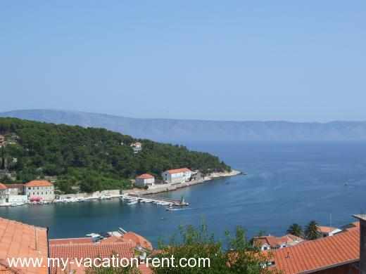 Apartments Vinko Croatia - Dalmatia - Hvar Island - Jelsa - apartment #767 Picture 1